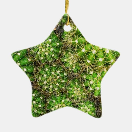 Cacti Dble-Sided Star Ornament