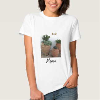 Cacti in Terracotta Pots Shirts