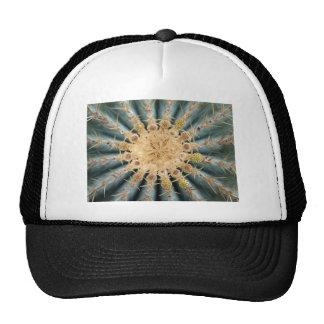 Cacti Macro -- Southwestern pastel style Hats
