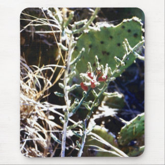 Cacti Mouse Pad