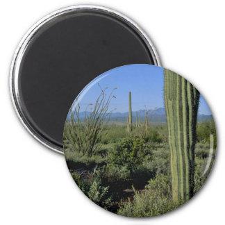 Cacti Stands Refrigerator Magnet