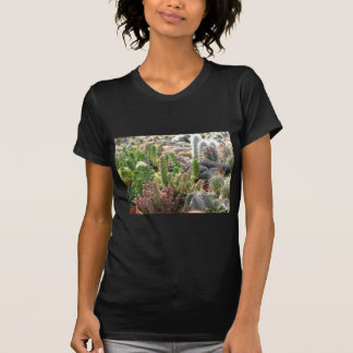 Cacti T Shirt