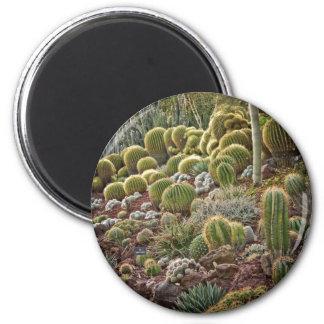 Cactus 1 magnet
