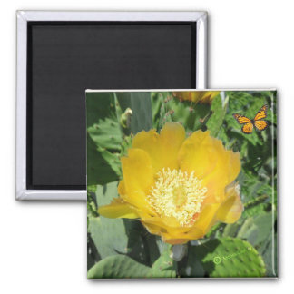 Cactus and Butterflies Square Magnet