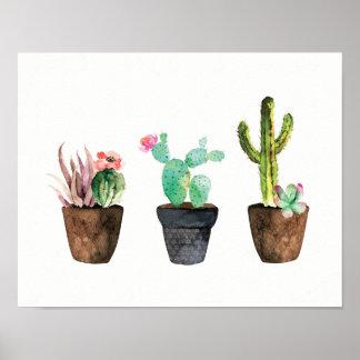 Cactus and Succulent Trio One Poster