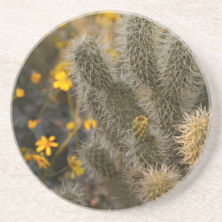 cactus and wildflowers coaster