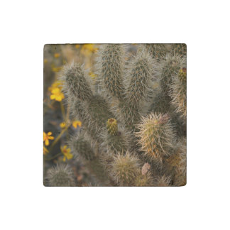 cactus and wildflowers stone magnet