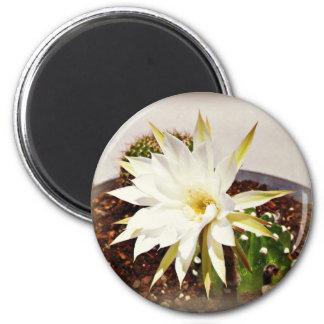 Cactus Bloom 6 Cm Round Magnet