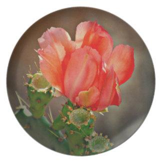 Cactus Bloom in Red Melamine Plate