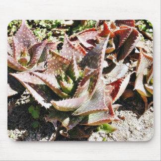 Cactus Cacti Mousepad