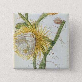Cactus: Cereus, from Trew's 'Plantae Selectae' 175 15 Cm Square Badge