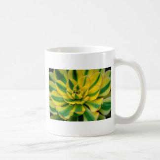 Cactus Design Coffee Mug