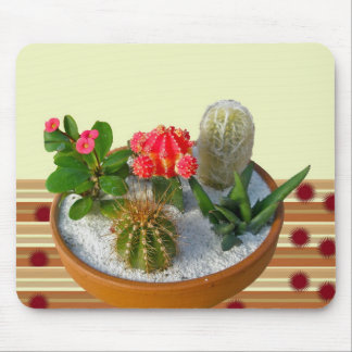 Cactus Dish Garden #1 Mousepad