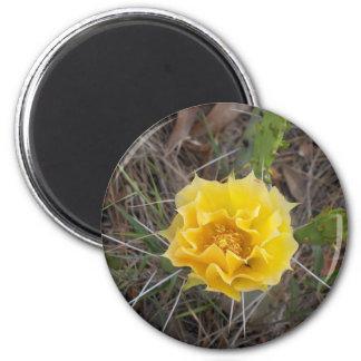 Cactus Flower 6 Cm Round Magnet