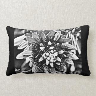 Cactus Flower in Black and White Lumbar Cushion