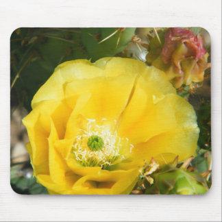 cactus flower mouse mat