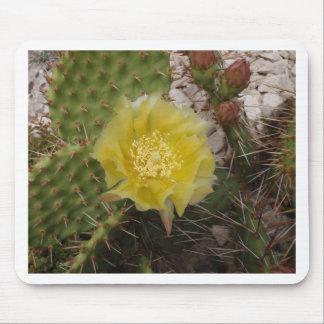 Cactus Flower Mousepads
