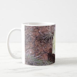 Cactus Flower Mug