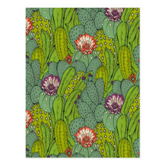 Cactus Flower Pattern Postcard
