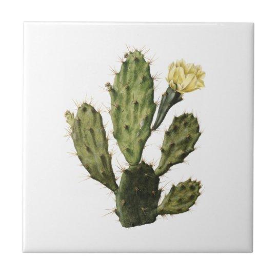 Cactus Flower Vintage Drawing Ceramic Tile
