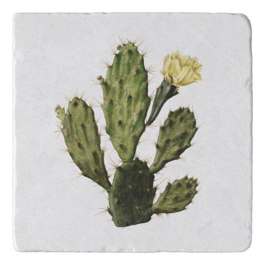 Cactus Flower Vintage Drawing Stone Trivet