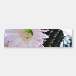 Cactus Flower White Bumper Sticker