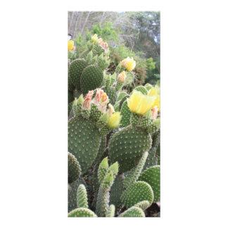 Cactus Flowers Rack Card