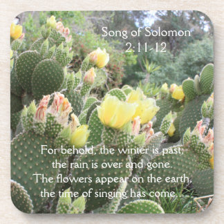 Cactus Flowers Song of Solomon Coasters