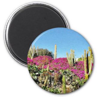 Cactus Garden 6 Cm Round Magnet