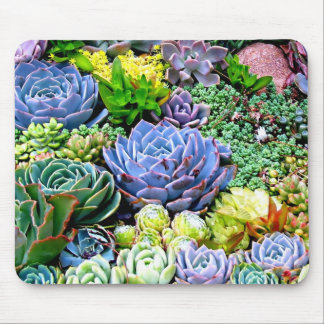 Cactus Garden Mousepad