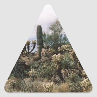 Cactus Garden Triangle Sticker