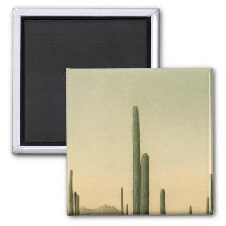 Cactus grove, Arizona Refrigerator Magnet