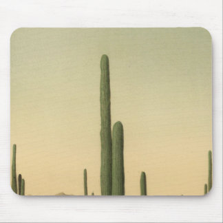 Cactus grove, Arizona Mouse Mat