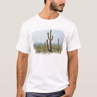Cactus in Saguaro National Park , Arizona 2 T-Shirt