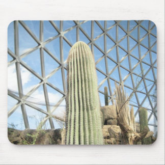 Cactus in the Henry Doorly Zoo Mouse Pad
