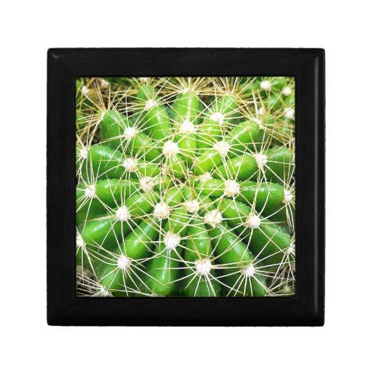 Cactus Jewellery/Gift Box