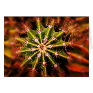 Cactus Macro Card