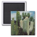 Cactus Magnet
