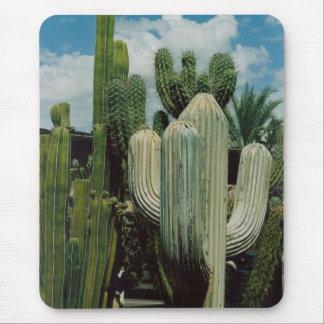 Cactus Mouse Mat