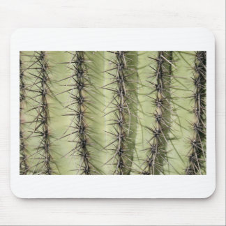 Cactus Mouse Pads