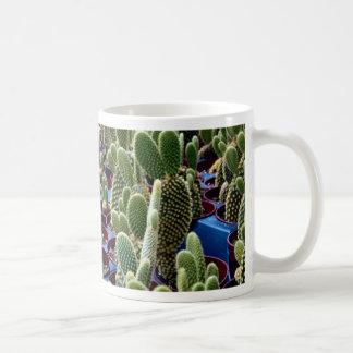 Cactus, Opuntia Microdasys-albispina Desert Mugs
