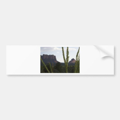 cactus over Bell Rock Bumper Sticker