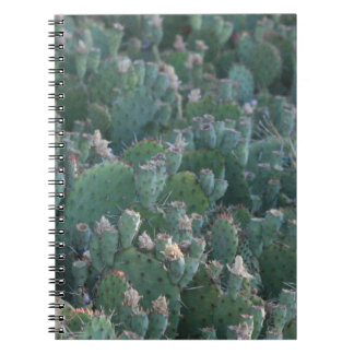 Cactus Patch Spiral Notebook