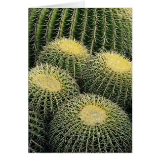 Cactus Pattern Card