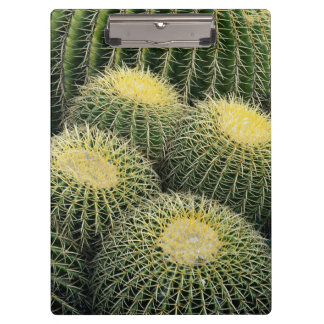 Cactus Pattern Clipboard