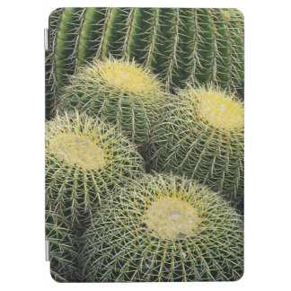 Cactus Pattern iPad Air Cover