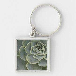 Cactus pattern key ring