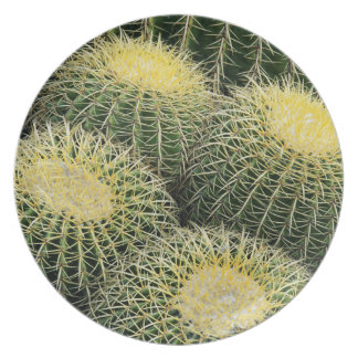 Cactus Pattern Plate