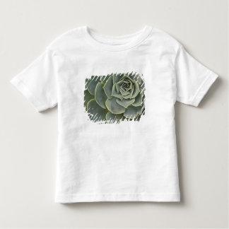Cactus pattern toddler T-Shirt