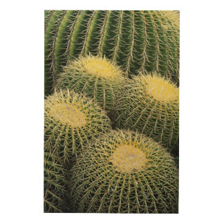 Cactus Pattern Wood Print